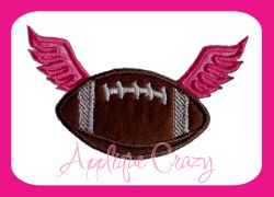 Football with wings